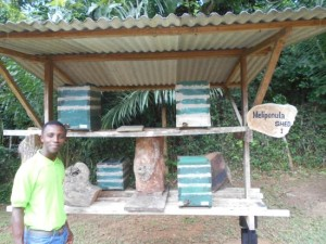 International Stingless Bee Centre,tourism,ghana